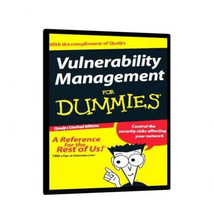 Vulnerability Exploit & website Hacking for Dummies Free Book