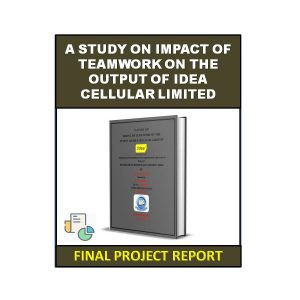 A Study on Impact of Teamwork on The Output of Idea Cellular Limited 6